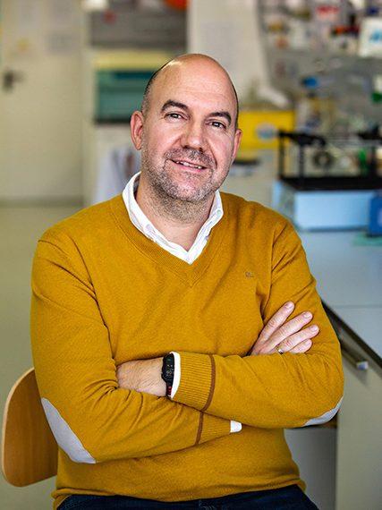 Felix-Freire-Iribarne-Beca-Leonardo-2020-Ciencias-Basicas-427×576
